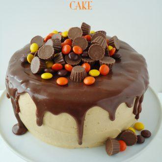 Chocolate Peanut Butter Cake Recipe - A dark chocolate cake recipe with peanut butter frosting makes this chocolate peanut butter cake decadent and delicious! | BlahnikBaker.com