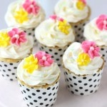 Vanilla Anise Cupcakes
