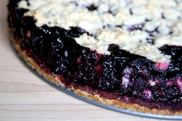 Blueberry_crumb_bars_2