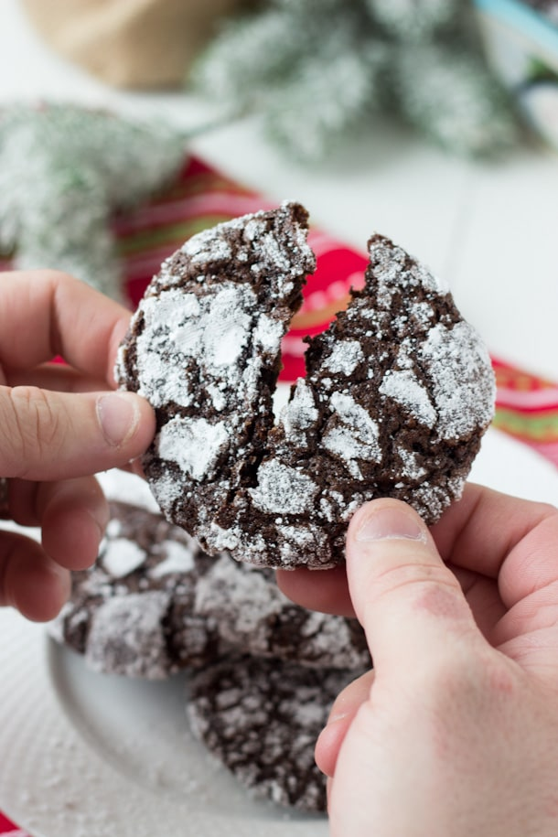 Double Chocolate Crinkle Cookies - deep chocolate flavor with a moist gooey interior!