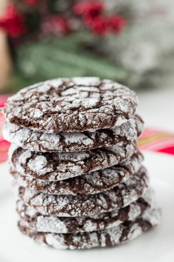 Double Chocolate Crinkle Cookies - deep chocolate flavor with a moist gooey interior!