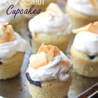 Mini Blueberry Coconut Cupcakes