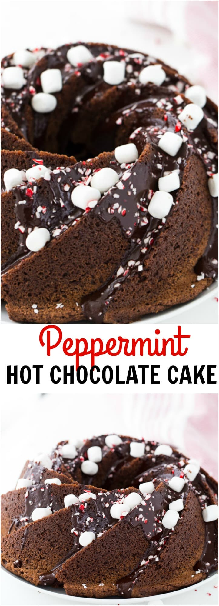 A decadent peppermint hot chocolate bundt cake this is winter perfect and a holiday season delight.