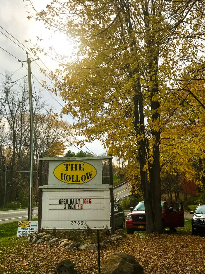 From a Syracuse local, these are the 5 best fall activities that are a must-do! Everything from the best local apple orchards to fun fall festivals.
