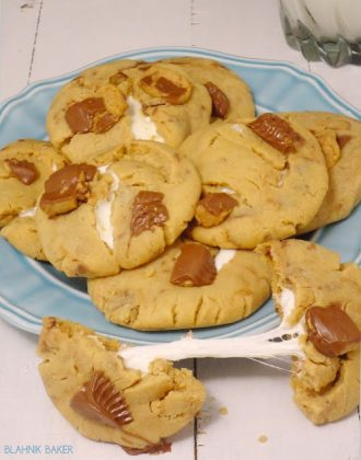 peanut butter marshmallow cookies