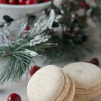 Orange Walnut Macarons with Spiced Cream Cheese and Cranberry Filling