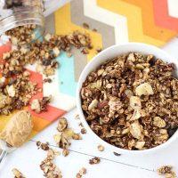 Peanut Butter Chocolate & Banana Chip Granola