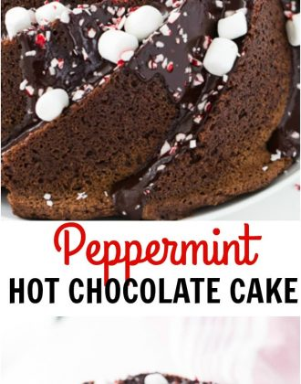 https://aclassictwist.com/wp-content/uploads/2015/12/Peppermint-Hot-Chocolate-Bundt-Cake