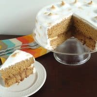 Elvis S'mores Cake