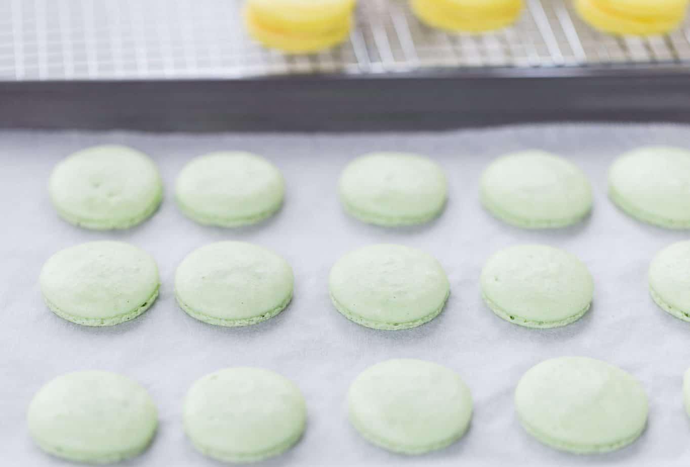 Lemon Lime Macarons