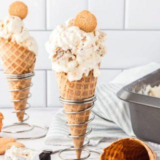 No-Churn Snickerdoodle Ice Cream