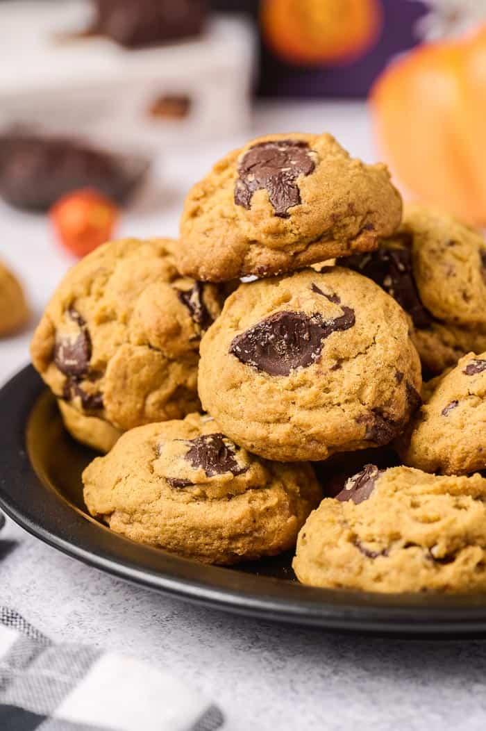 Chocolate Peanut Butter Pumpkin Cookies